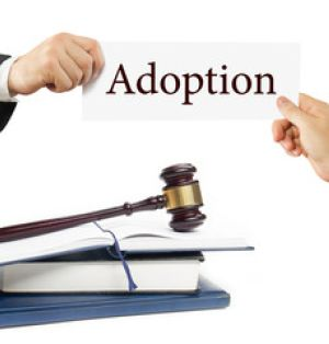 Seven Questions to Ask Your Adoption Attorney